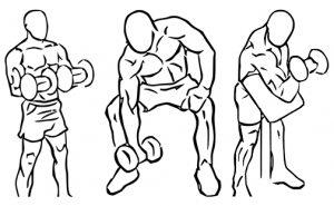 Biceps_curl_reverse_with_dumbbells_2-horz.jpg