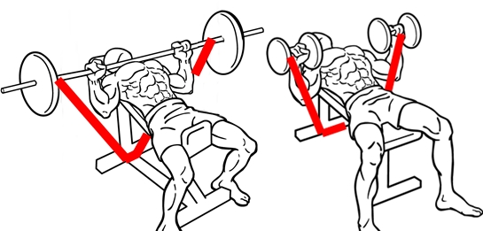 Incline-bench-press-2-2-crop-horz.jpg
