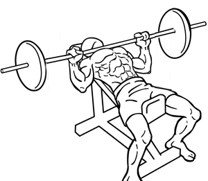Incline-bench-press-2-2-crop.png