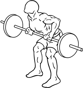 Reverse-grip-bent-over-rows-2.png