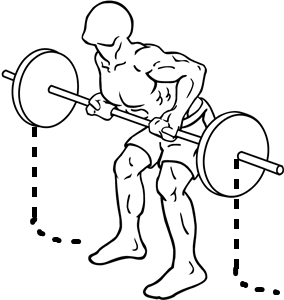 Reverse-grip-bent-over-rows-2_20161126082351410.png