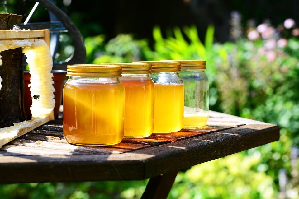honey-352205_960_720.jpg