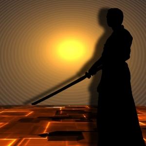 martial-arts-291051_960_720.jpg