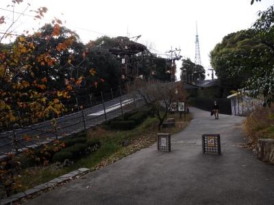 Matsuyama201612-304.jpg