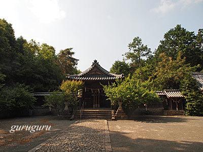 14fujinami001.jpg