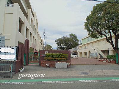 16sakamoto15.jpg