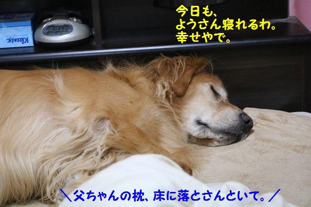 IMG_2510_2017010820194014d.jpg