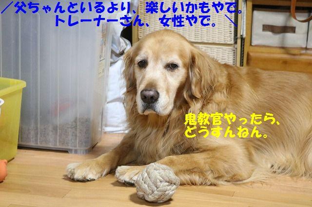 IMG_3808.jpg