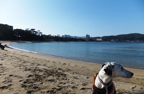 oohama_02050045.jpg