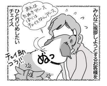 羊の国のラブラドール絵日記シニア!!「おもてなし大使チェイス」2