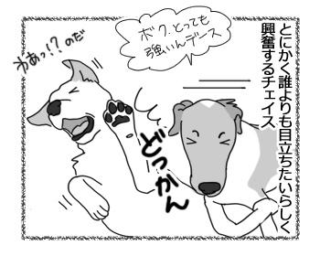 羊の国のラブラドール絵日記シニア!!「おもてなし大使チェイス」3