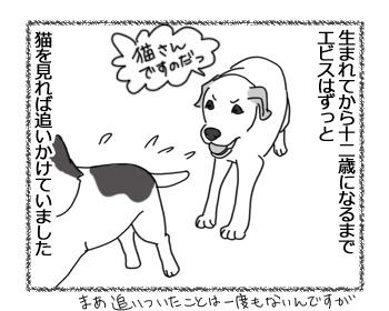 羊の国のラブラドール絵日記シニア!!「違いのわかるオトコ?」1