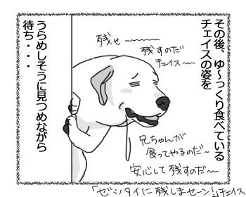 02022017_dog3mini2.jpg