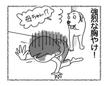 03122016_dog7.jpg