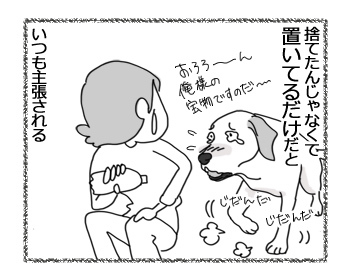 05012017_dog3.jpg