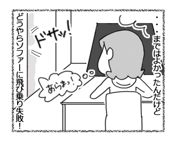 05122016_dog2.jpg
