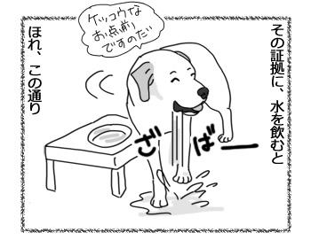 羊の国のラブラドール絵日記シニア!!「エビスの水漏れ修理」2
