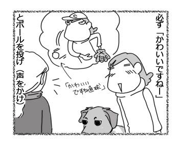 08022017_dog2.jpg