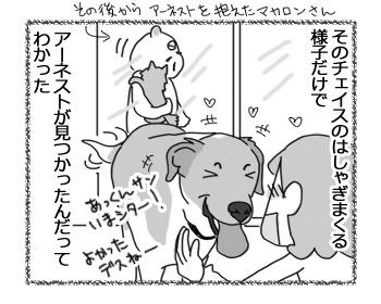 羊の国のラブラドール絵日記シニア!!「家族デスからー」4