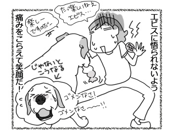 羊の国のラブラドール絵日記シニア!!「シニアと暮らす時のちょっとした注意事項」4