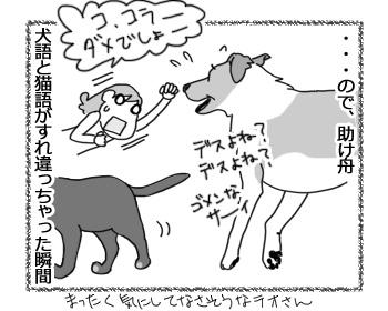 羊の国のラブラドール絵日記シニア!!「猫語は難しいデース」5