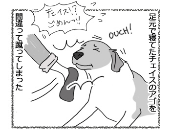 羊の国のラブラドール絵日記シニア!!「泣きっ面にアーネスト」2