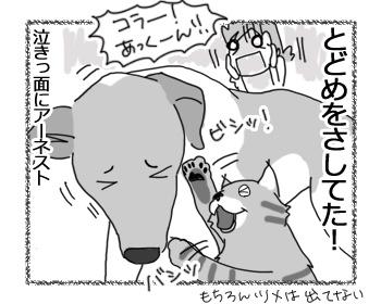 羊の国のラブラドール絵日記シニア!!「泣きっ面にアーネスト」5