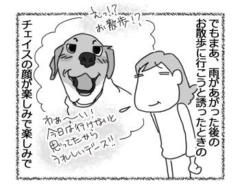 羊の国のラブラドール絵日記シニア!!「てるてる坊主さーん!」4