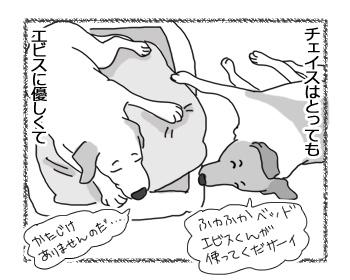 羊の国のラブラドール絵日記シニア!!「○○に厳しいチェイス」1