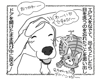 羊の国のラブラドール絵日記シニア!!「多勢に無勢?」2
