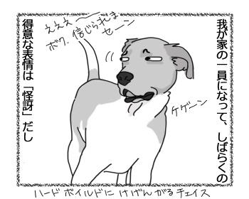 羊の国のラブラドール絵日記シニア!!「チェイスの魅力」2