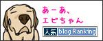 24112016_dogBanner.jpg