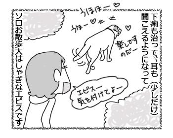 羊の国のラブラドール絵日記シニア!!「ふぁいとー!いっぱぁつ!」1