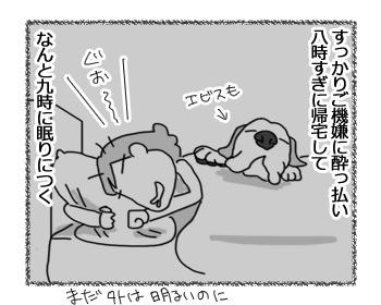 29012017_dog2.jpg