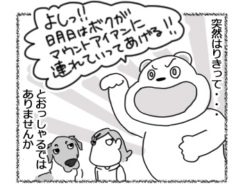 30012017_dog3.jpg