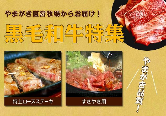 やまがき肉
