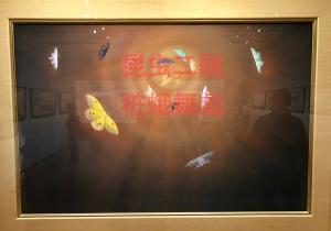 日本美術院創立120年記念 日本画の挑戦者たち-5