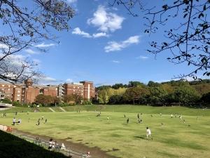 芝生公園2018