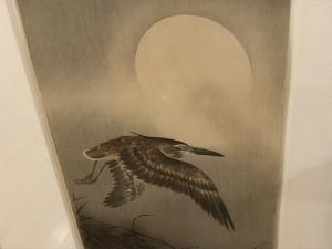 小原古邨展 花と鳥のエデン-16