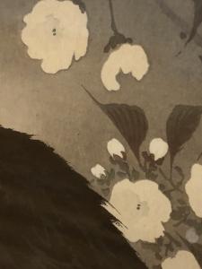 小原古邨展 花と鳥のエデン-18