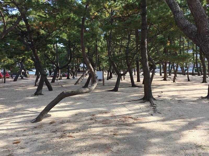 バスツアー淡路島 040