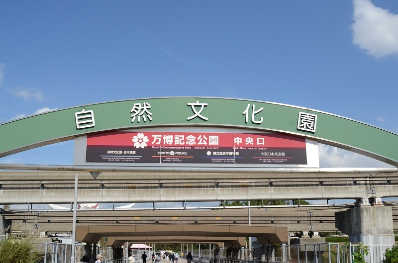 DSC_7581.jpg