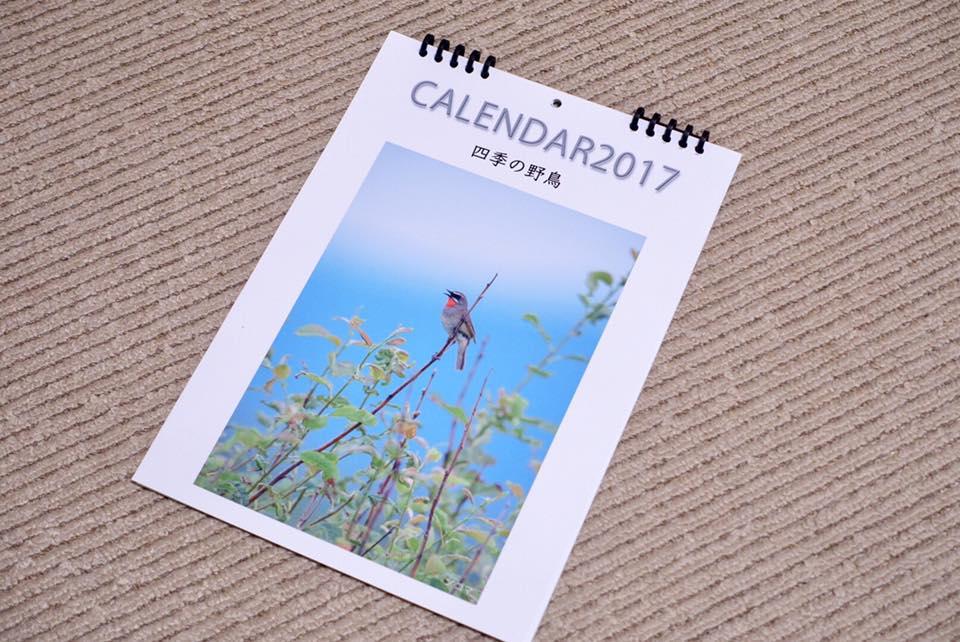 calendar2017.jpg
