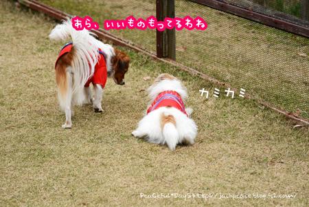 161226_yuasa17.jpg