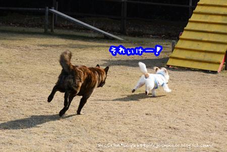170101_yuasa6.jpg