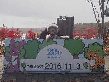 レジーナの森探検20161103-13