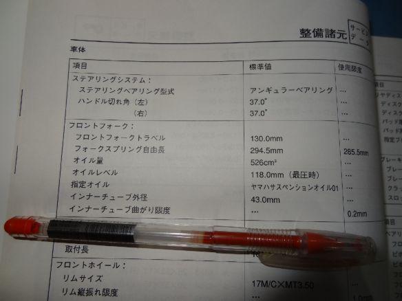 DSC03231.jpg