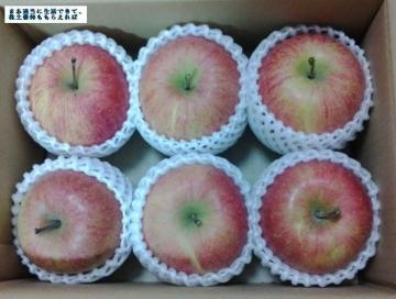 イーサポートリンク リンゴ02 201611