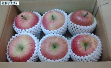 イーサポートリンク リンゴ03 201611