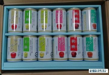 綿半HD りんごジュース02 201609